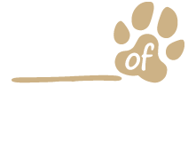friends-of-toto-small